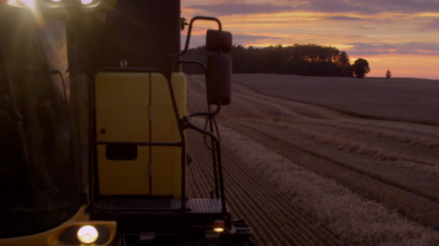 Harvesting during sunset. Pink, moody sky. Close up
