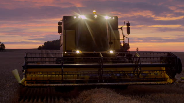 Harvesting during sunset. Pink, moody sky