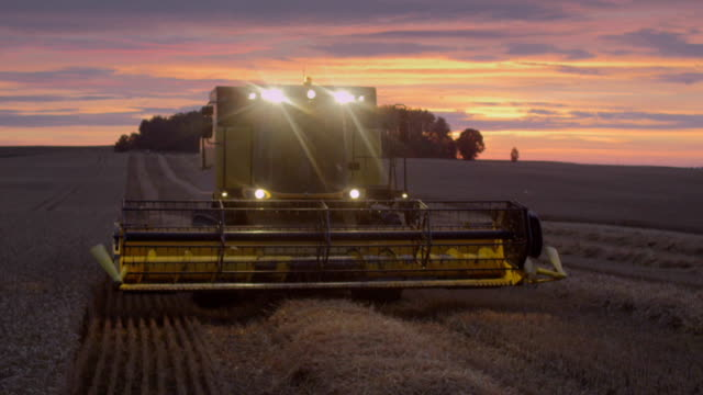 harvesting during sunset. pink, moody sky - harvesting stock videos & royalty-free footage