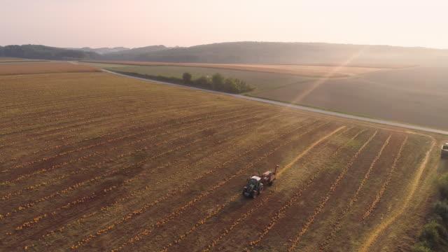 stockvideo's en b-roll-footage met luchtfoto opruiming pompoenen - aanhangwagen