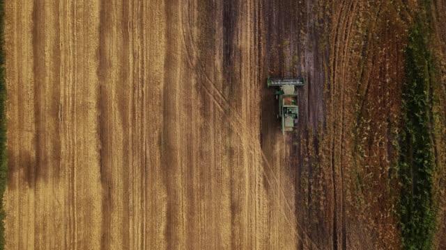 収穫期。真上の空中ショット - コンバイン点の映像素材/bロール