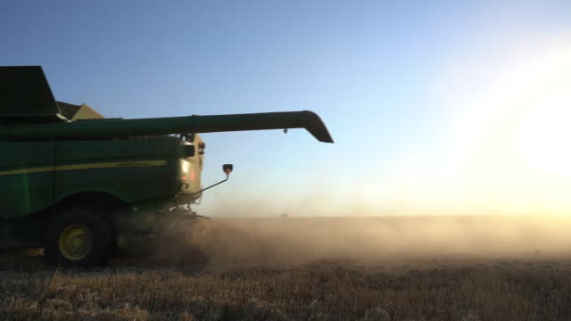 harvesting winter wheat in pawnee oklahoma u s on tuesday june 24 2020 - lens flare stock videos & royalty-free footage