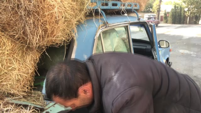 hasan hasanov and his son ali hasanov are seen next to their car loaded with hay in tartar, azerbaijan on november 02, 2020. father and son who live... - plaque bacteria stock videos & royalty-free footage