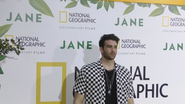 hasan piker at the premiere of national geographic documentary films' 'jane' at the hollywood bowl on october 09, 2017 in los angeles, california. - ドキュメンタリー映画点の映像素材/bロール