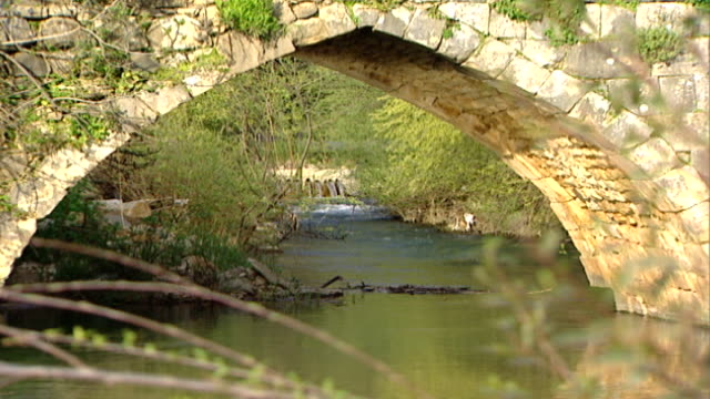 hasbani river. zoom-in from a dam from an ancient roman bridge spanning the river, which runs for 25 miles in lebanon before crossing into israel. - rapid stock videos & royalty-free footage