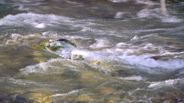 hasbani river. zoom-in to rapids in the swift flowing river. the hasbani forms the border between lebanon and the golan heights. - rapid stock videos & royalty-free footage