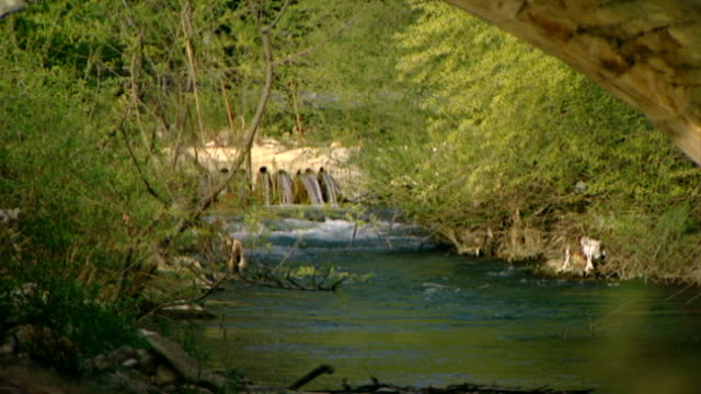 hasbani river. zoom-out from a dam to an ancient roman bridge spanning the river, which runs for 25 miles in lebanon before crossing into israel. - rapid stock videos & royalty-free footage