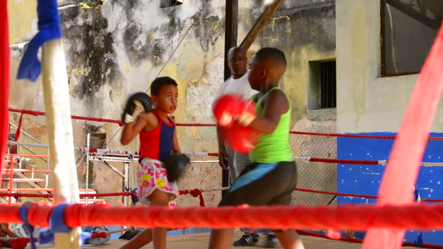 havana cuba habana best boxing gym young boys learning to fight at rafael trejo famous ring aged 8-10 future champions - combat sport stock videos & royalty-free footage