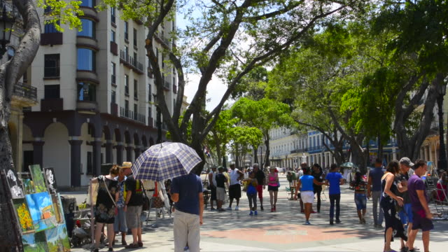 havana cuba prado city walk in center with art for sale and locals walking - drawing artistic product stock videos & royalty-free footage