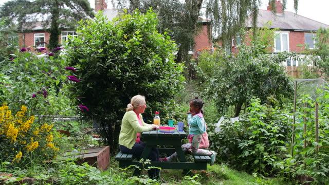 having a picnic - enjoyment stock videos & royalty-free footage