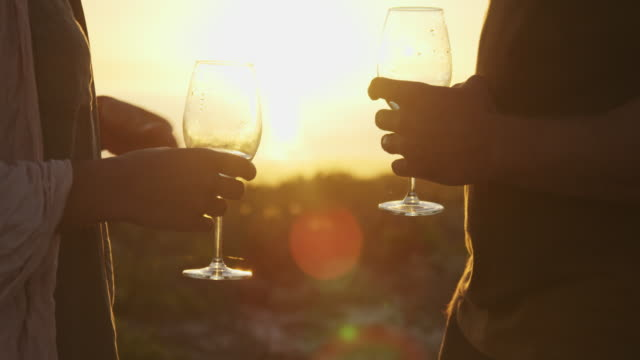 vídeos de stock, filmes e b-roll de having drinks during sunset - taça de vinho