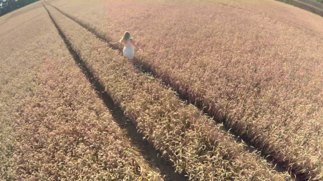 having fun in a wheat field - stock video - overexposed stock videos & royalty-free footage