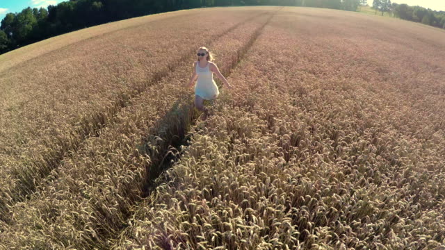 having fun in a wheat field - stock video - only young women stock videos & royalty-free footage