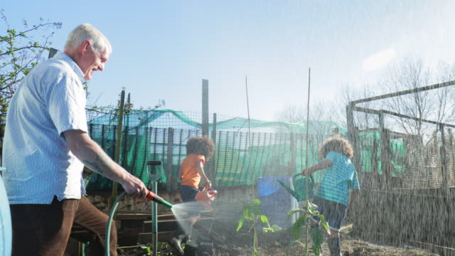 having fun with grandkids - community garden stock videos & royalty-free footage