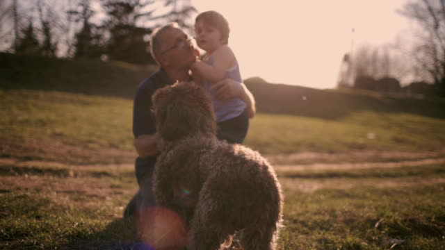 having fun with my grandpa and dog - grandchild stock videos & royalty-free footage