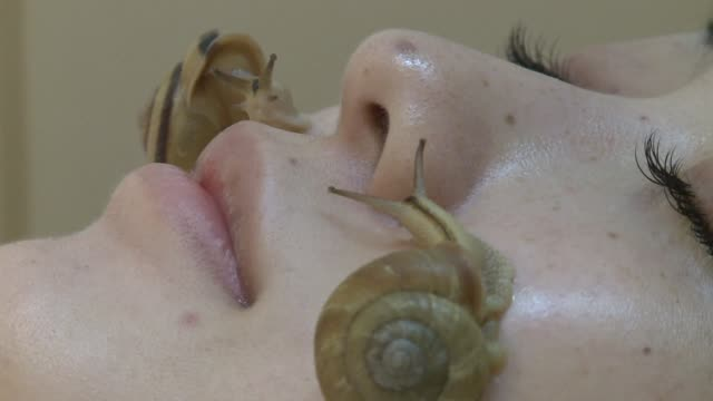 having live snails crawling on your face sounds like the thing of nightmares but in japan one company is hoping people will be prepared to pay for it... - snail stock videos & royalty-free footage