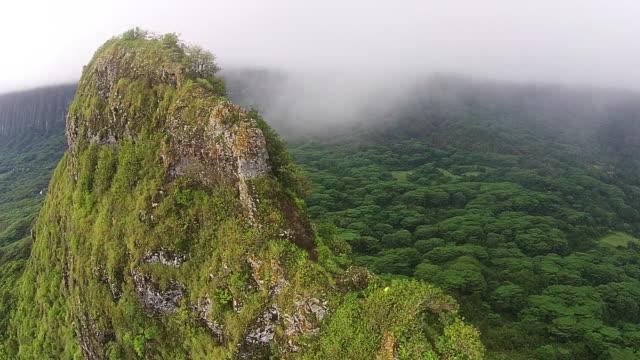 stockvideo's en b-roll-footage met hawaii hiking lifestyle aerial. - menselijke arm