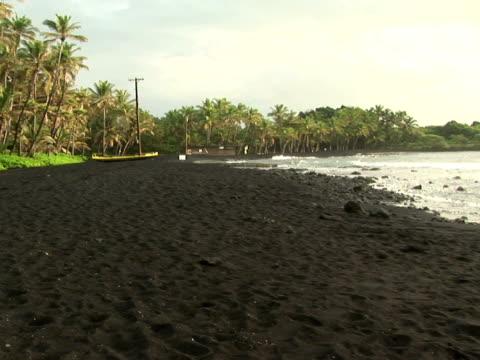 ws usa, hawaii, the big island, punaluu black sand beach park, seashore - fan palm tree stock videos & royalty-free footage