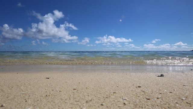 hawaii - pacifico occidentale video stock e b–roll