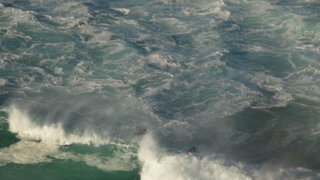 hawaii - oahu bildbanksvideor och videomaterial från bakom kulisserna