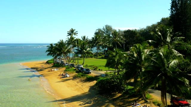 hawaiian beach aerial shot - hawaii islands stock videos & royalty-free footage