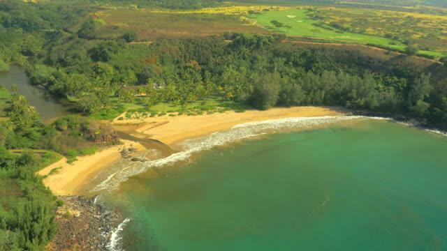 Praia havaiana UAV monótona Filmagem aérea