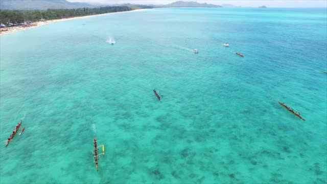 hawaiian canoe regatta, aerial - oar stock videos & royalty-free footage