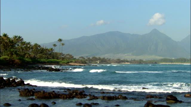 Hawaiian Coastline