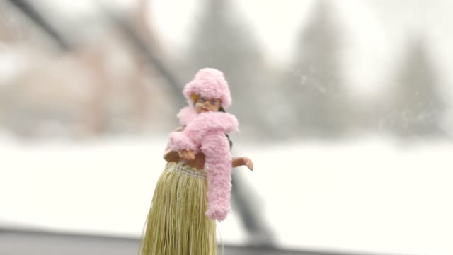 hawaiian hula doll dressed for winter. - parabrezza video stock e b–roll