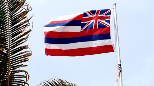 vídeos y material grabado en eventos de stock de bandera del estado de hawai. - honolulu