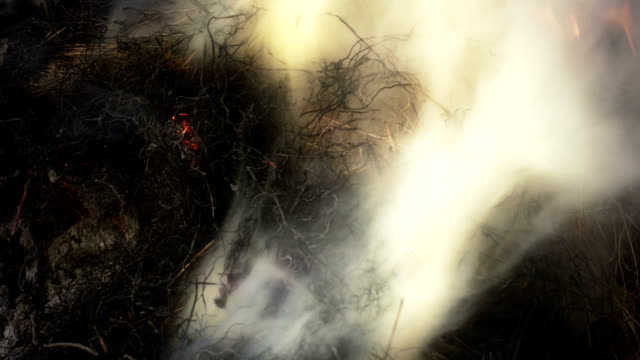 hay after burning in campfire with a lot of smoke - hay texture stock videos & royalty-free footage