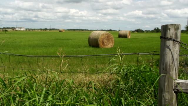 hay bale in distance beyond old fence post - hay bail stock videos & royalty-free footage