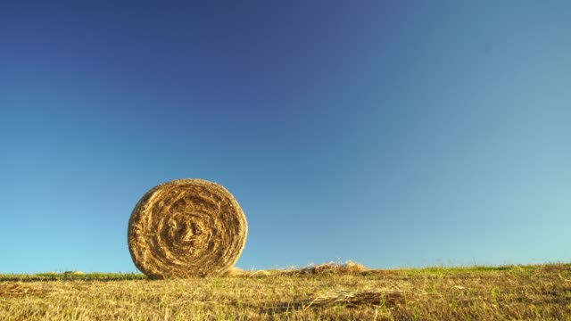 hay bale in field. - hay field stock videos & royalty-free footage