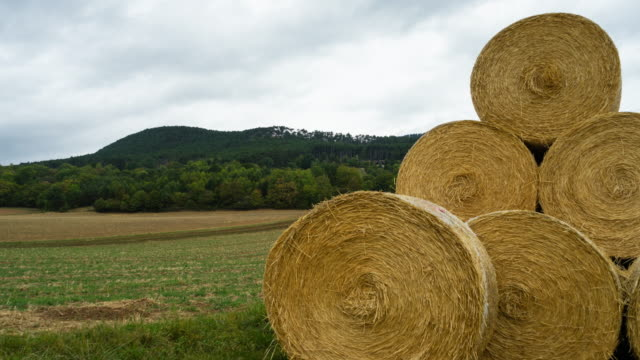 hay bale (4k) - hay stack stock videos & royalty-free footage