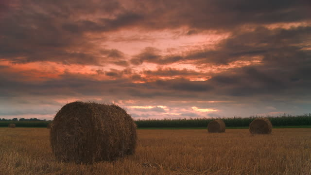 hd dolly: hay bales at sunset - hay field stock videos & royalty-free footage