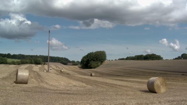 ws, hay bales in field, schleswig holstein, germany - bale stock videos & royalty-free footage
