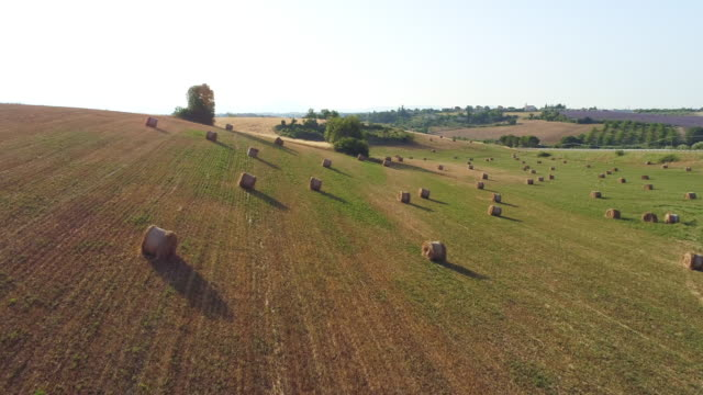 aerial hay bales in the countryside of provence - hay field stock videos & royalty-free footage