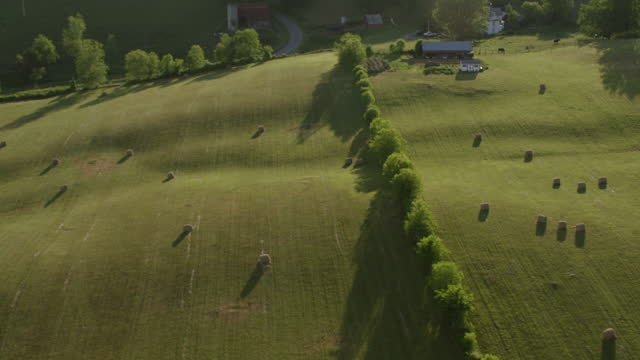 ws aerial pov hay bales on farmland / smyth county, virginia, united states - rolling landscape stock videos & royalty-free footage