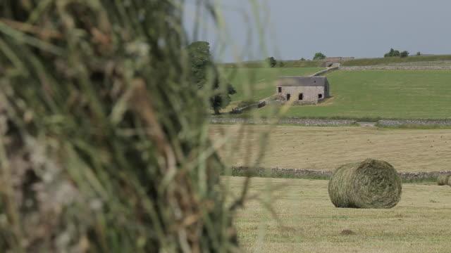 hay field near tissington, peak district national park, derbyshire, england, uk, europe - bale stock videos & royalty-free footage
