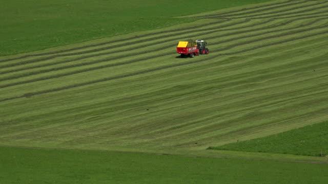 Hay harvest, Oberstdorf, Allgäu, Svabia, Bavaria, Germany