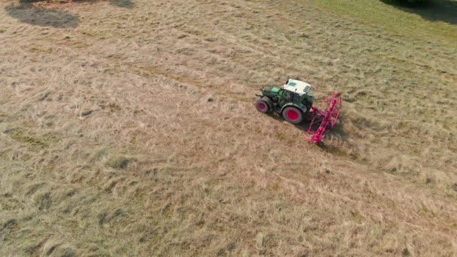 heuernteprozess - cereal plant stock-videos und b-roll-filmmaterial