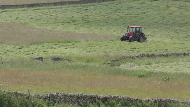 Hay Making near Monyash, Peak District National Park, Derbyshire, England UK, Europe