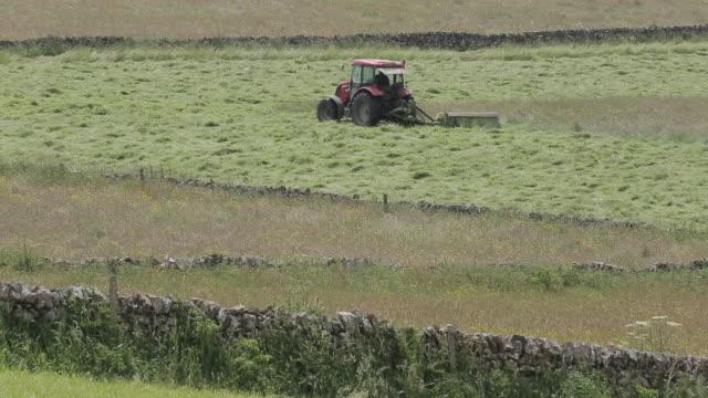 hay making near monyash, peak district national park, derbyshire, england uk, europe - derbyshire stock videos & royalty-free footage