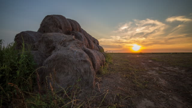 hay stacks sunset timelapse - hay bail stock videos & royalty-free footage