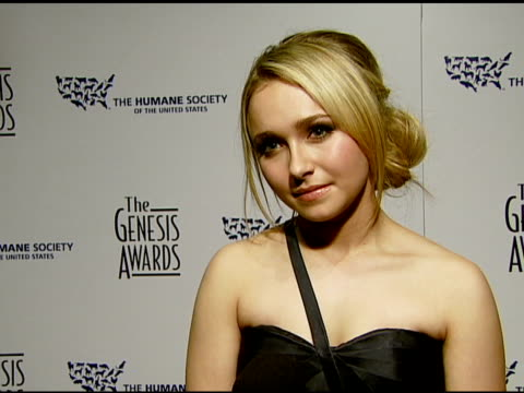stockvideo's en b-roll-footage met hayden panettiere on her award her trip to japan to save dolphins and whales and what everyone can do to help animals at the 2008 genesis awards at... - cetacea