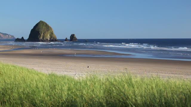 hd haystack rock cannon beach oregon - haystack rock stock videos & royalty-free footage
