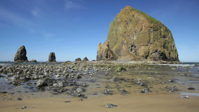 ls, haystack rock, cannon beach, oregon - haystack rock stock videos & royalty-free footage