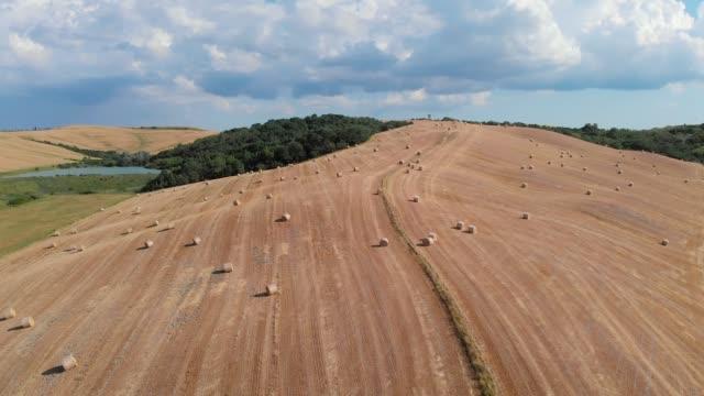 haystack rolls hills in siena tuscany italy - haystack stock videos & royalty-free footage