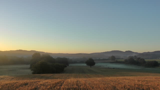 a haze hovers over a meadow at golden hour. - golden hour stock videos & royalty-free footage