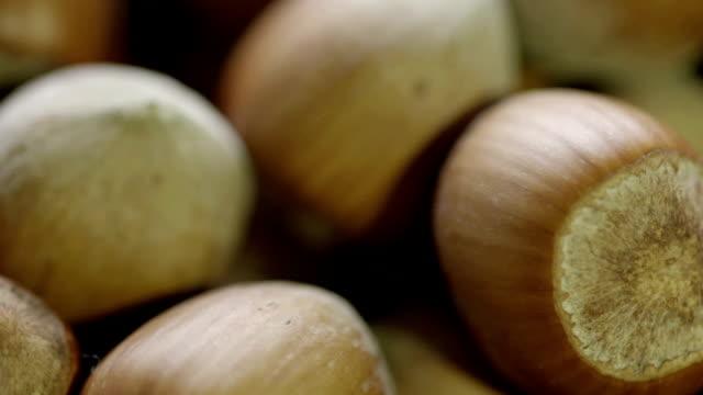 stockvideo's en b-roll-footage met hazelnoot - notendop